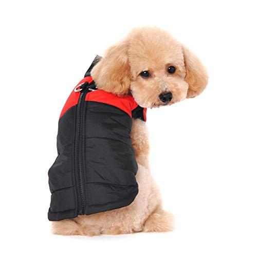 Ectkuee Petit Manteau imperméable pour Chien Veste d'hiver rembourré matelassé Doudoune pour Chien Pet Chiot vêtements Assortis Tailles et Couleur