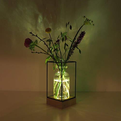 Gadgy® l Vase en verre transparant avec lumière | Vase décoratif transparent avec base en bois naturel et cadre en métal | 22,5 x 10,8 x 10,8