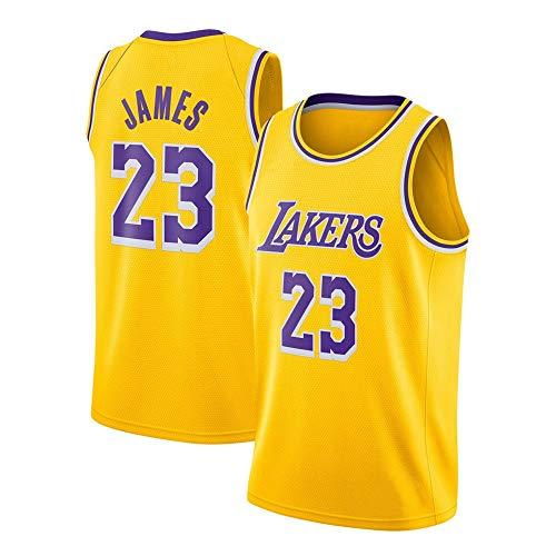 WANLN Lebron James #23 - NBA Lakers Maillot Hommes Adulte Maillot de Basket Broderies...
