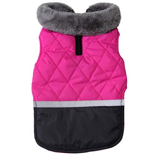 JoyDaog Manteau en polaire pour chien de petite taille, imperméable et chaud, idéal pour...